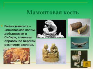 Мамонтовая кость Бивни мамонта – «ископаемая кость», добываемая в Сибири, гла