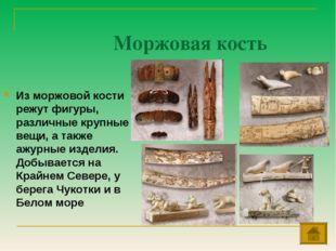 Моржовая кость Из моржовой кости режут фигуры, различные крупные вещи, а такж