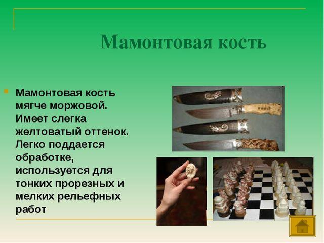 Мамонтовая кость Мамонтовая кость мягче моржовой. Имеет слегка желтоватый отт...