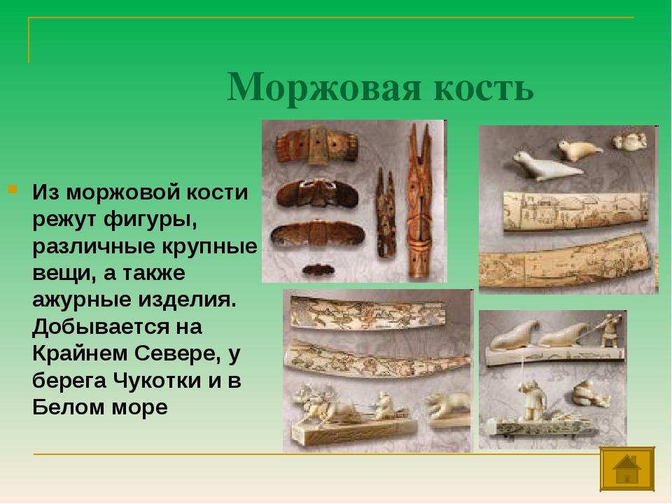 Моржовая кость Из моржовой кости режут фигуры, различные крупные вещи, а такж...