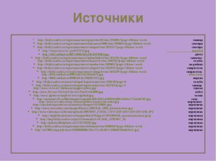 Источники http://fotki.yandex.ru/tag/птицы/users/gyperion59/view/328485/?page