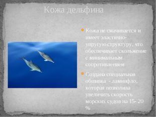 Кожа дельфина Кожа не смачивается и имеет эластично-упругую структуру, что о