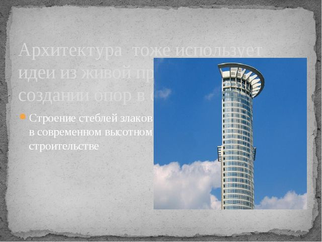 Архитектура тоже использует идеи из живой природы при создании опор в строите...