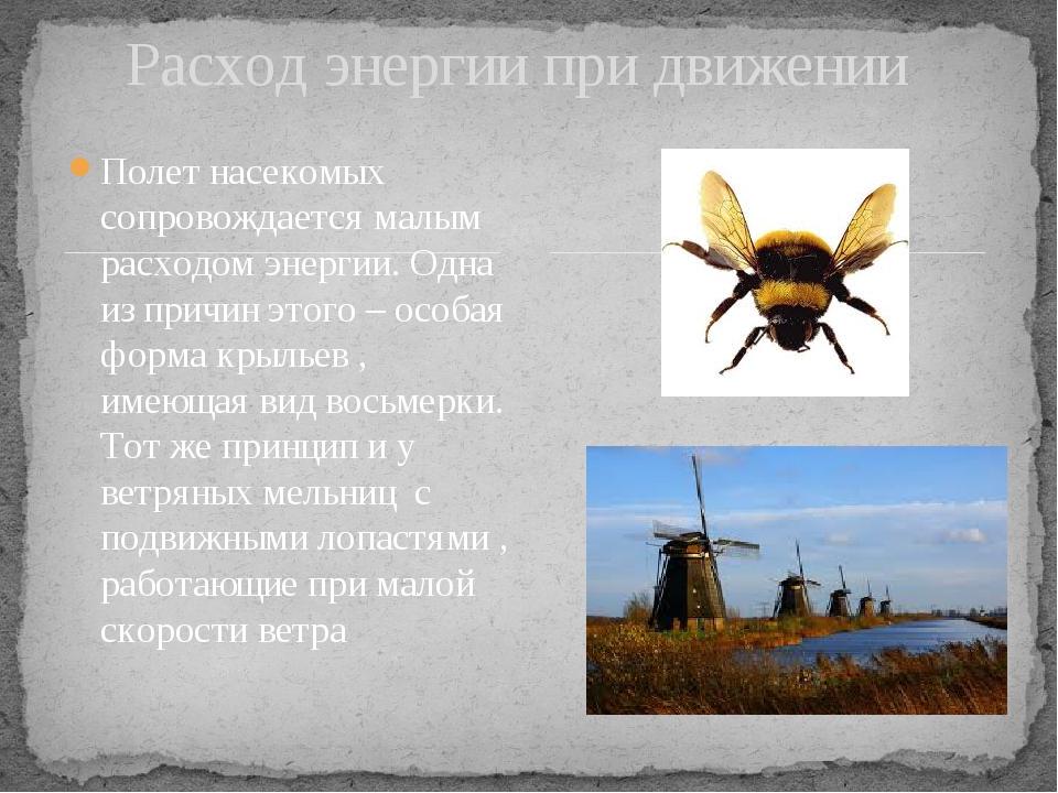 Полет насекомых сопровождается малым расходом энергии. Одна из причин этого...