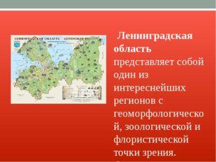 Ленинградская область представляет собой один из интереснейших регионов с ге