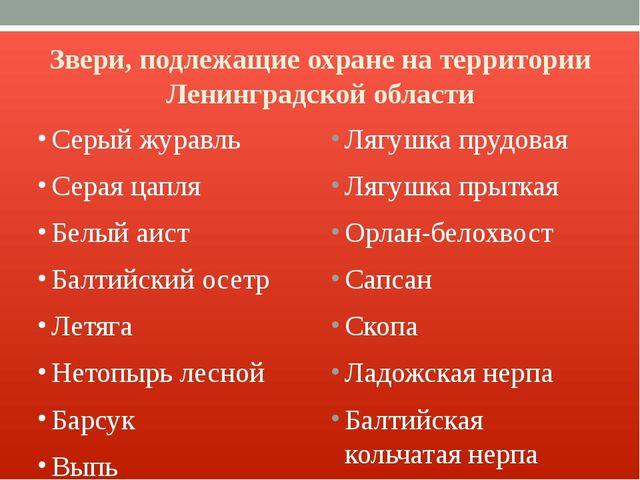 Звери, подлежащие охране на территории Ленинградской области Серый журавль Се...