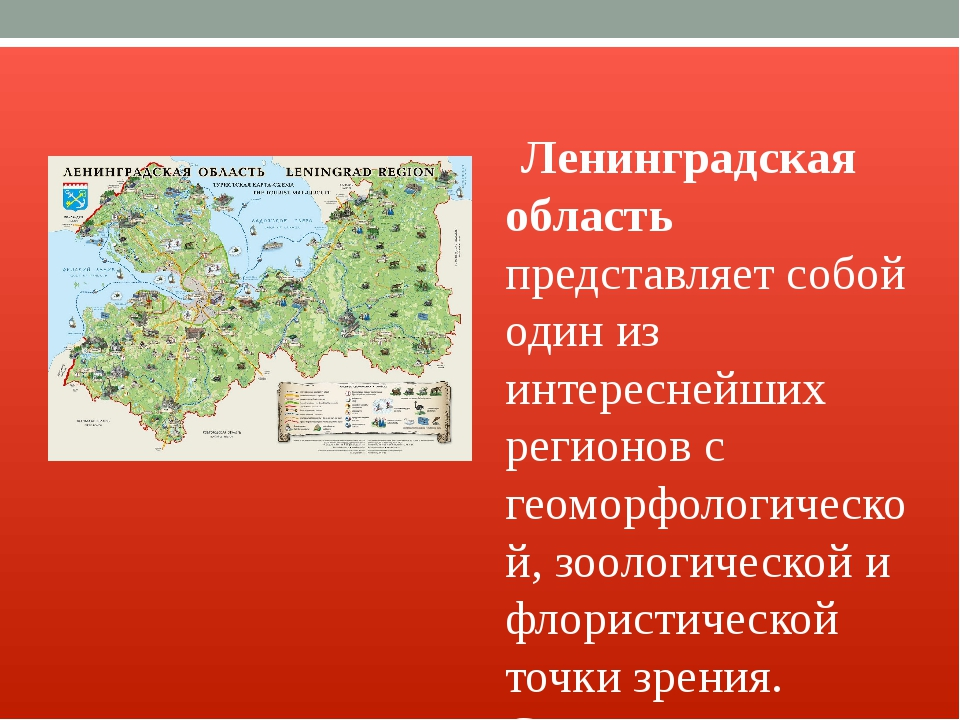 Ленинградская область представляет собой один из интереснейших регионов с ге...