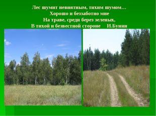 Лес шумит невнятным, тихим шумом… Хорошо и беззаботно мне На траве, среди бер