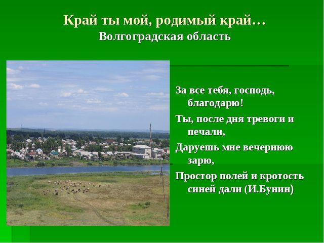 Край ты мой, родимый край… Волгоградская область За все тебя, господь, благод...
