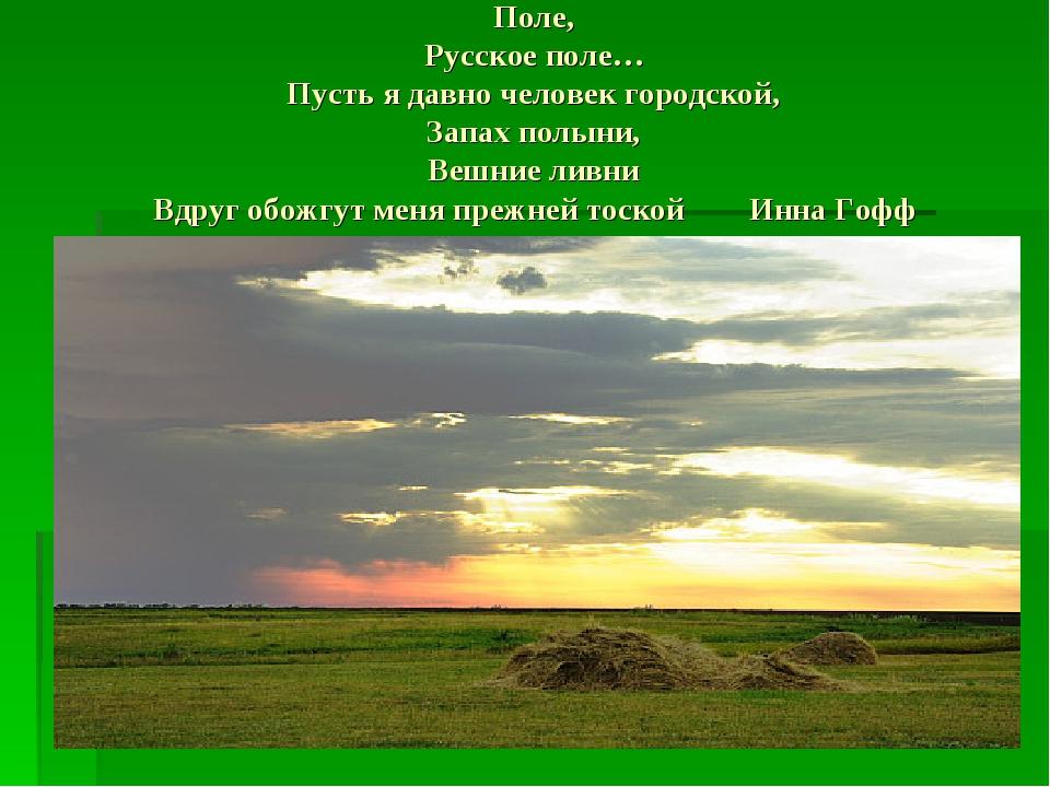 Поле, Русское поле… Пусть я давно человек городской, Запах полыни, Вешние лив...