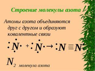 Строение молекулы азота Атомы азота объединяются друг с другом и образуют ков