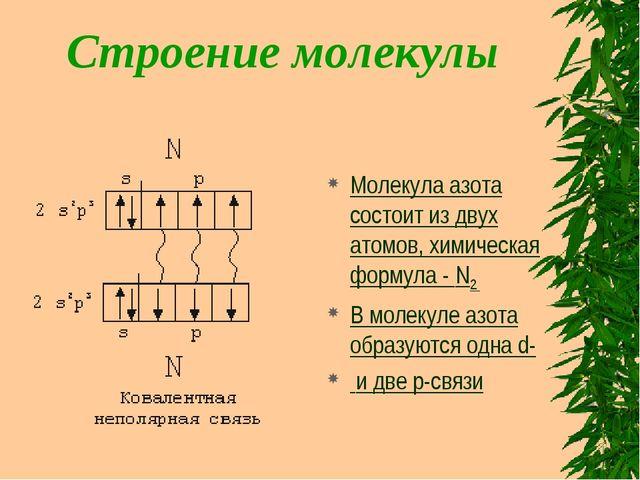 Строение молекулы Молекула азота состоит из двух атомов, химическая формула -...