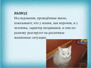ВЫВОД: Исследования, проведённые мною, показывают, что у кошек, как впрочем,