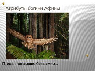Атрибуты богини Афины Птицы, летающие безшумно... Эти птицы была спутницей и