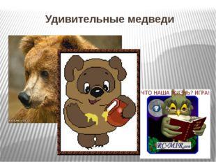 Удивительные медведи Проникновение человека в тайгу заставило медведей в прям