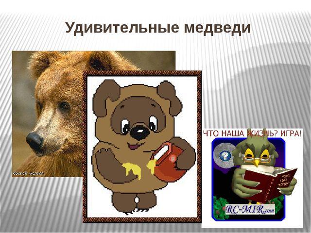Удивительные медведи Проникновение человека в тайгу заставило медведей в прям...