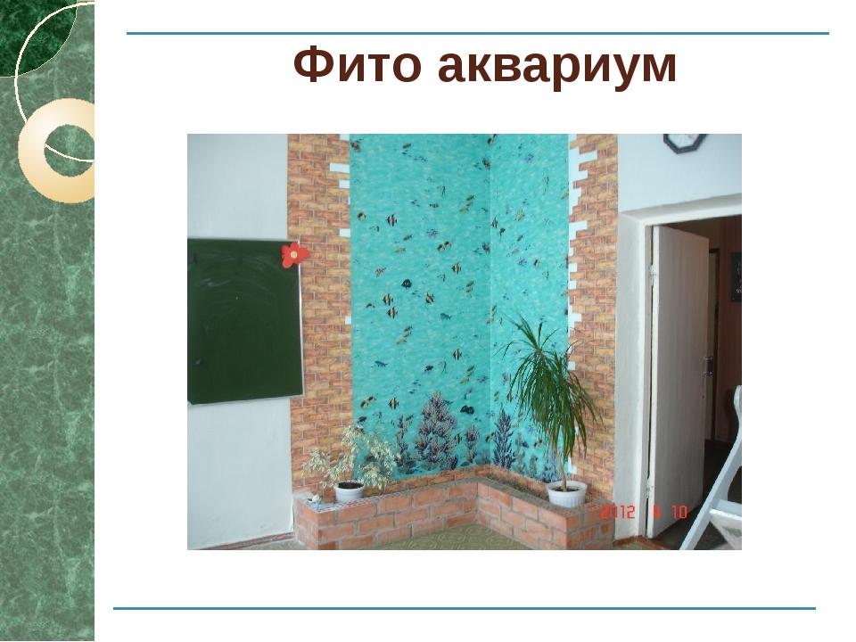 Фито аквариум