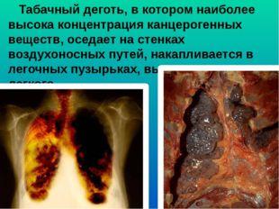 Табачный деготь, в котором наиболее высока концентрация канцерогенных вещест