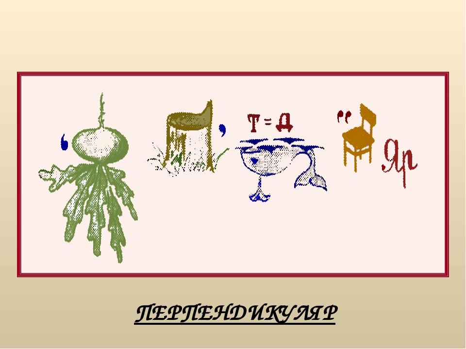 Какое математическое понятие объединяет эти живые организмы? ответ