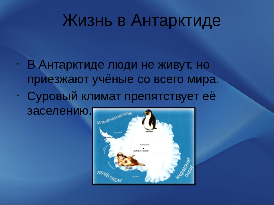 Жизнь в Антарктиде В Антарктиде люди не живут, но приезжают учёные со всего м...