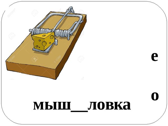 мыш__ловка о е
