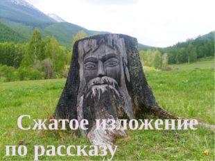 Сжатое изложение по рассказу В.П. Катаева «Старый пень»
