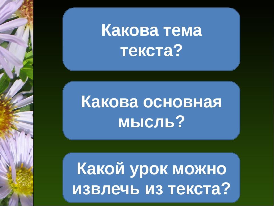 Какова тема текста? Какова основная мысль? Какой урок можно извлечь из текста?