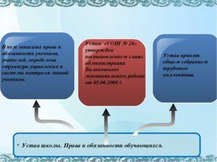 Text in here В нем записаны права и обязанности учеников, учителей, определе