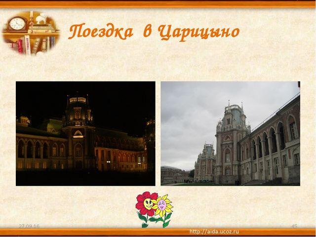 Поездка в Царицыно * *