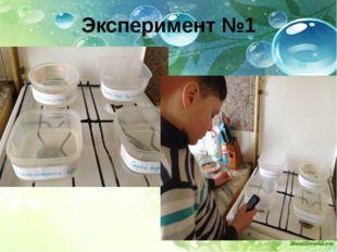 Эксперимент №1