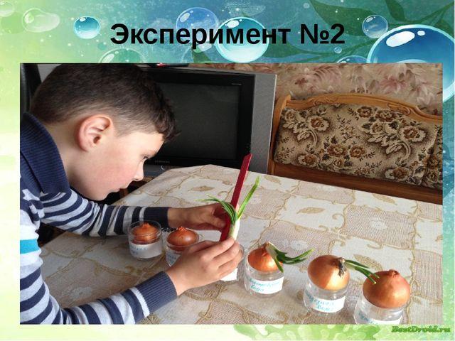 Эксперимент №2