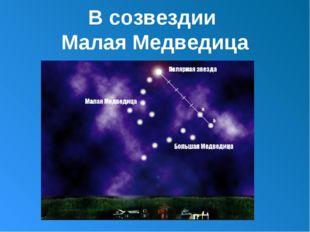 В созвездии Малая Медведица