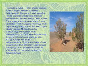 Сексеуіл [2 cурет ] - бұта немесе кішкене ағаш түріндегі алабота тұқымдас ө