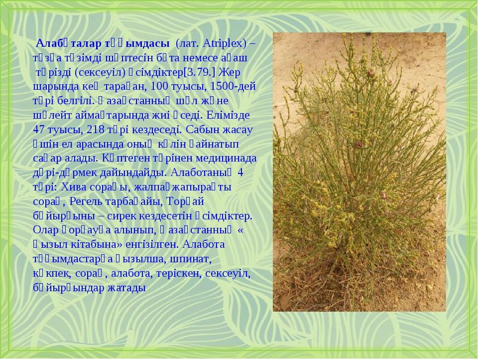 Алабұталар тұқымдасы (лат. Atriplex) – тұзға төзімді шөптесінбұтанемесеа...