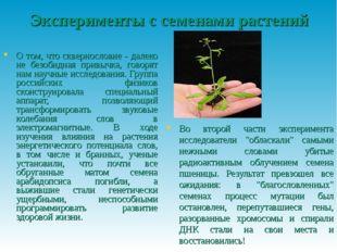 Эксперименты с семенами растений О том, что сквернословие - далеко не безобид
