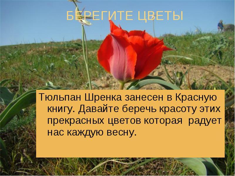 hello_html_11954469.jpg