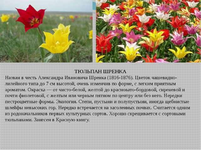 hello_html_575a1a60.jpg