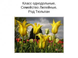 hello_html_6cb65245.jpg
