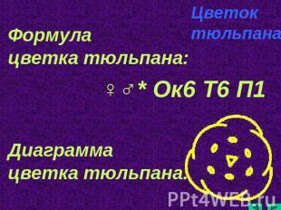 hello_html_m67b32d8d.jpg
