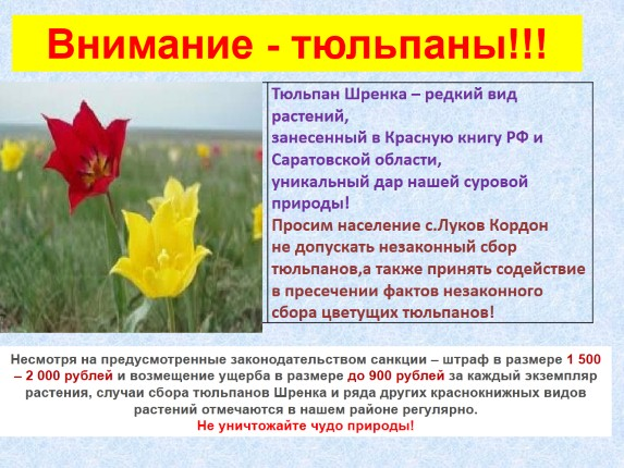 hello_html_m791bff7d.jpg