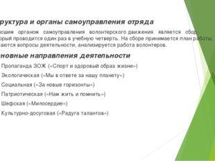 Структура и органы самоуправления отряда Высшим органом самоуправления волонт