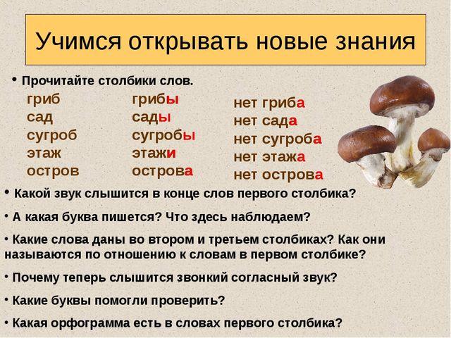 Прочитайте столбики слов. Учимся открывать новые знания гриб сад сугроб этаж...