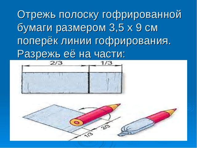 Отрежь полоску гофрированной бумаги размером 3,5 х 9 см поперёк линии гофриро...
