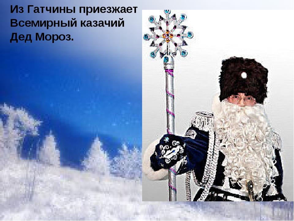 Из Гатчины приезжает Всемирный казачий Дед Мороз.