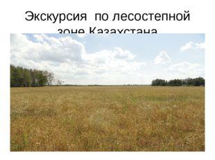 Экскурсия по лесостепной зоне Казахстана