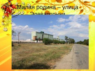 Малая родина – улица Элеваторная Белозёрова Татьяна