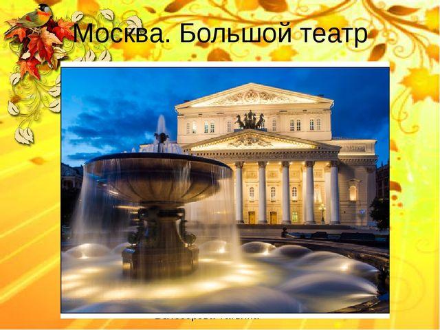 Москва. Большой театр Белозёрова Татьяна