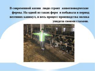 В современной жизни люди строят животноводческие фермы. На одной из таких фер