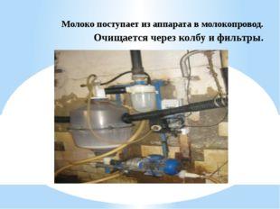 Молоко поступает из аппарата в молокопровод. Очищается через колбу и фильтры.