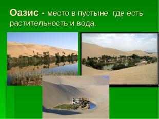 Оазис - место в пустыне где есть растительность и вода.
